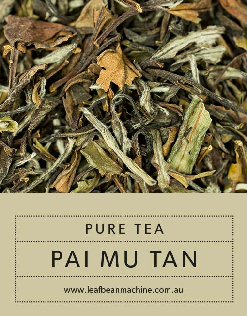 Image of Pure-Tea-Pai-Mu-Tan Tea