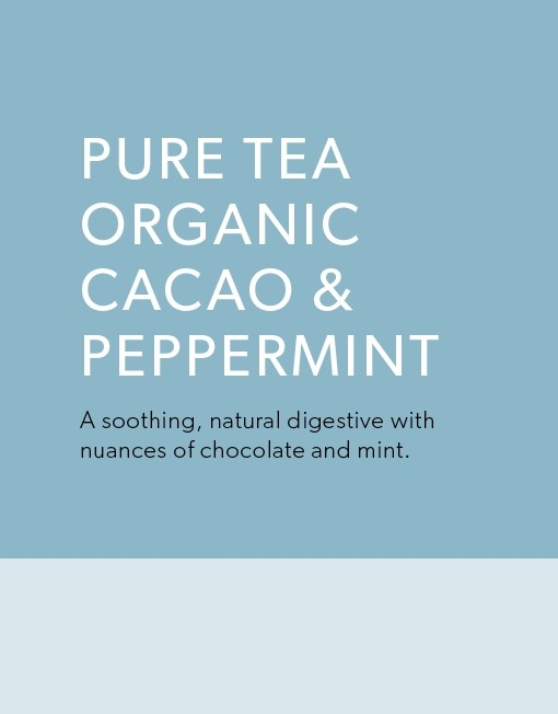 organic-tea-bags-by-pure-tea